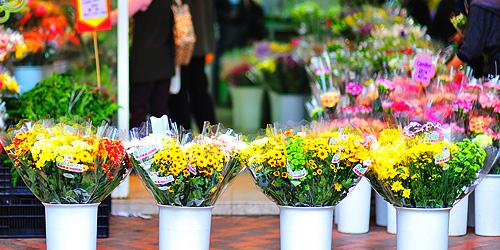 Shop hoa tuoi quan tan phu