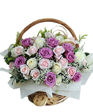 hoa sinh nhật màu tím đẹp nhất thế giới