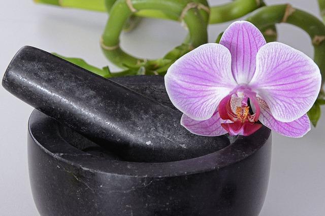 hoa lan hồ điệp đẹp nhất thế giới 19